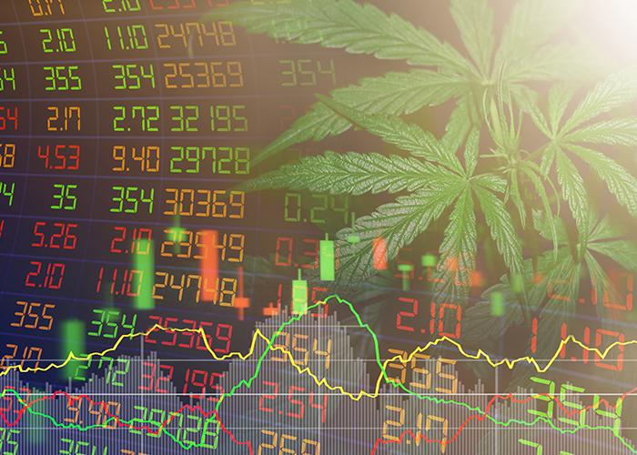 Der Cannabis Sektor boomt