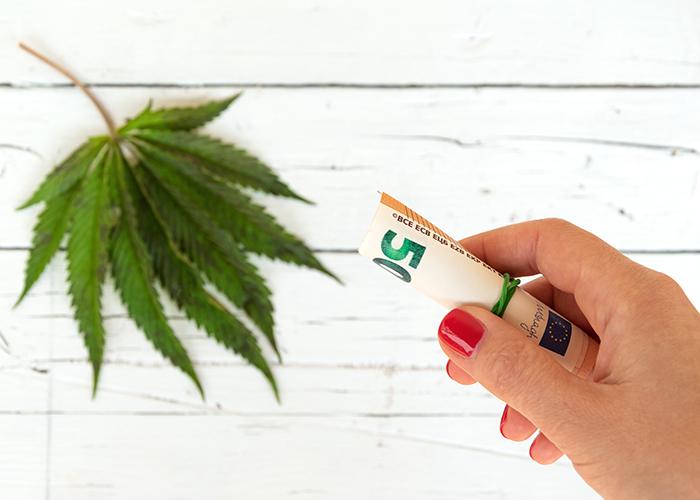 Cannabis Aktien kaufen...