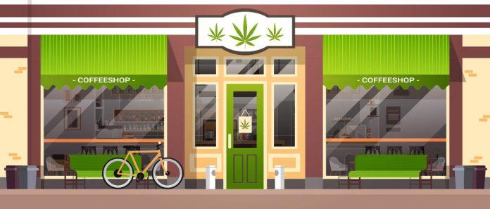 Cannabis Legalisierung: Kontrollierte Abgabe