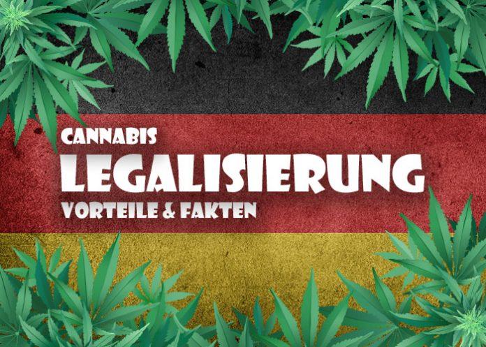 Cannabis Legalisierung: Vorteile und Fakten