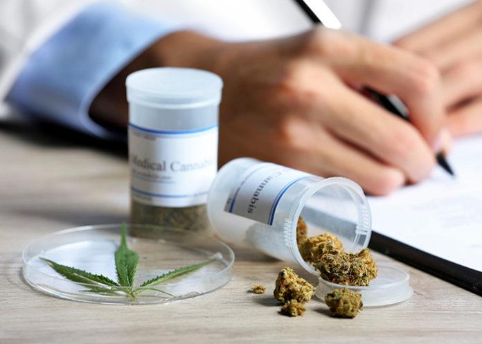 Cannabissorten Apotheke
