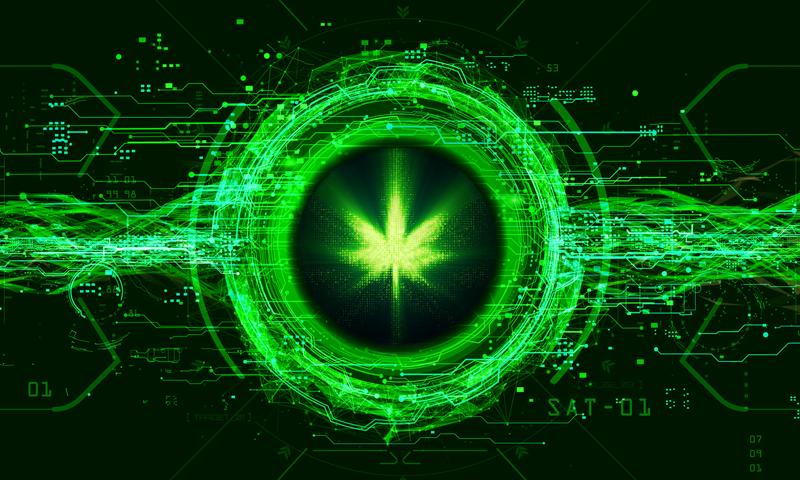 Jibbit Coin - Die grüne Cannabis-Kryptowährung