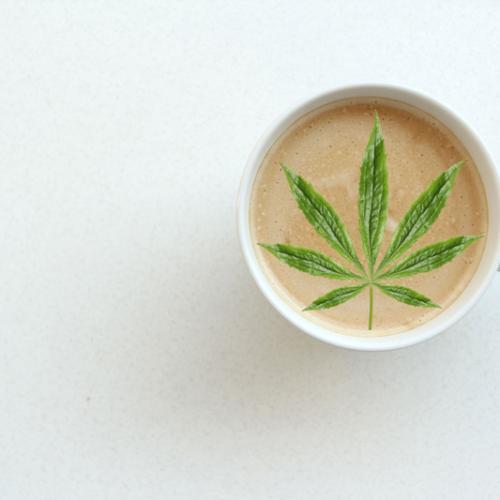 Dosierung-eines-Cannabis-Kakaos