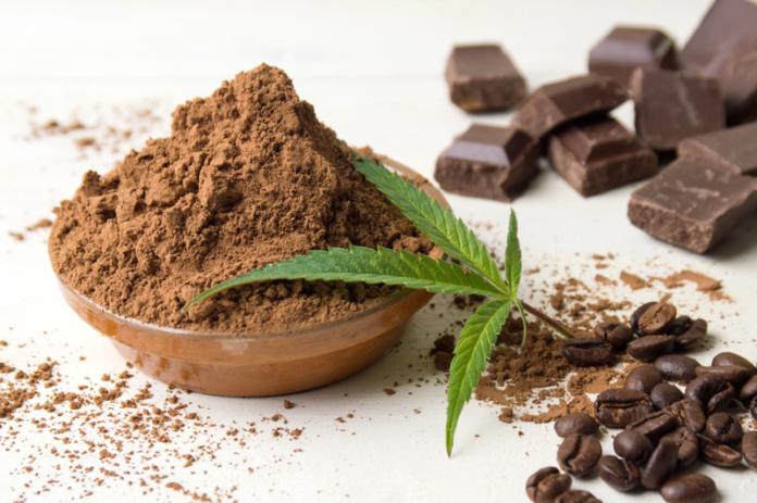 Heißer aromatischer Cannabis-Kakao für entspannte Abende